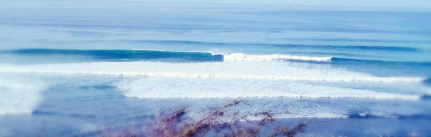 surf-tours2